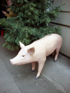 Schwein haben und h.a.p.p.y. sein!